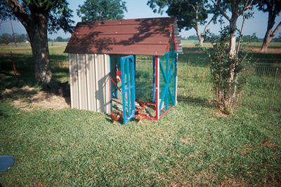 chicken coop by fence under trees